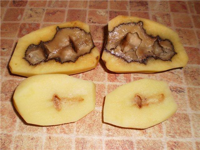 Если подмерзла картошка можно ли сажать что делать как спасти