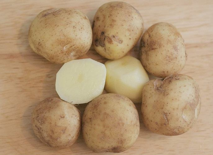 Сорт картофеля Леди Розетта (Lady Rosetta) – описание и фото