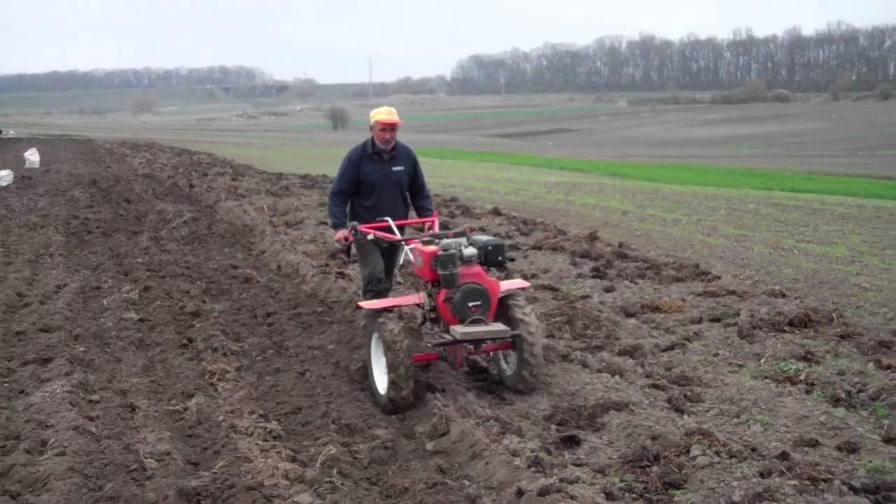 Как копать и убирать картофель с помощью мотоблока