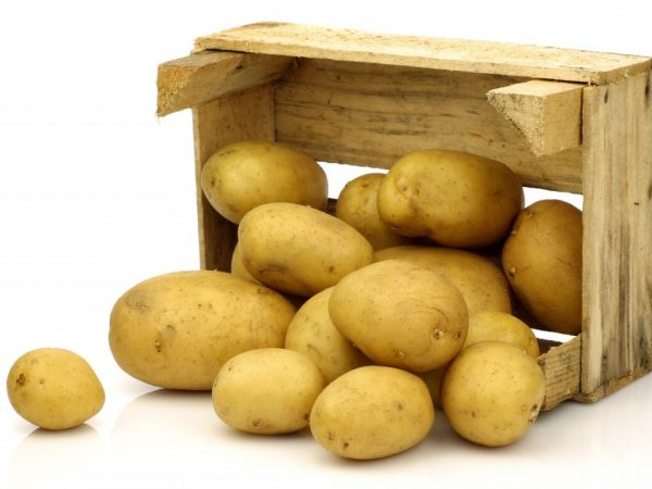 Короб для картошки на балконе