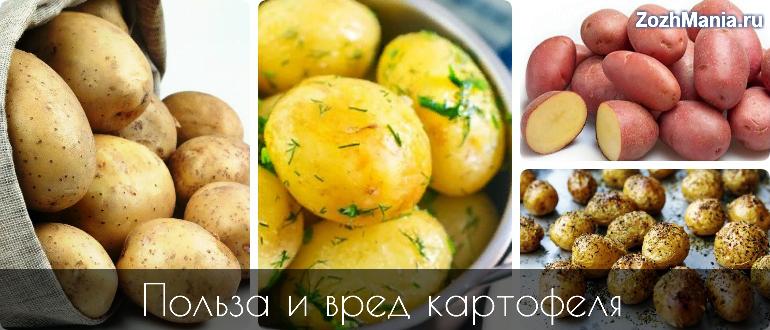 Картофельная Диета Вред И Польза. Можно ли есть картофель при похудении: калорийность блюд из картофеля, картофельная диета — меню на 3, 7 дней, правила, рекомендации диетолога, отзывы