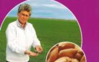 Препарат «Бункер» для картофеля: инструкция и дозировка