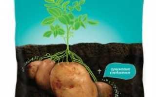 Исполин для картофеля: инструкция и дозировка средства
