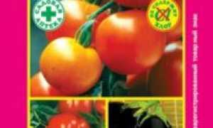 Сударушка для томатов — отзывы, описание