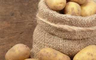 Сорт картофеля «Забава» – описание и фото