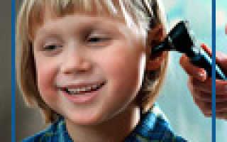 Остролодочник мягкоигольчатый — полезные свойства, описание