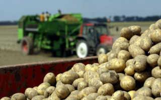 Препарат «Эпин-Экстра» для картофеля: инструкция и дозировка