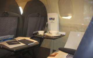 Сорт картофеля «Конкорд (Concorde)» – описание и фото