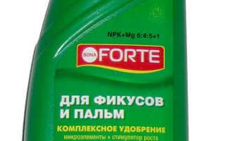 ЖКУ Воna Forte для кактусов — отзывы, описание