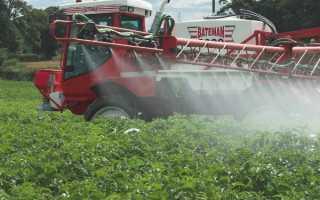 Средства от сорняков на картофеле: препараты для опрыскивания