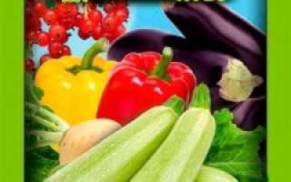Здравень для лука и чеснока турбо — отзывы, описание