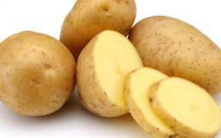 Аллергия на картофель у взрослых и детей: симптомы и лечение