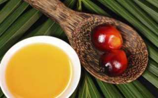 Пальма африканская масличная — полезные свойства, описание