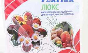 ФЕРТИКА для цветов — отзывы, описание