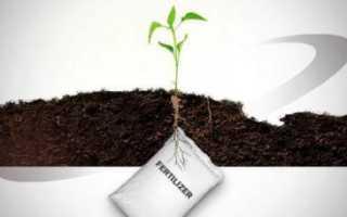 Удобрение для корнеплодов Фаско  — отзывы, описание