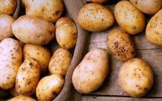 Картошка во сне: сажать, собирать, хранить, готовить – сонник