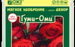 Гуми-ОМИ Розы — отзывы, описание