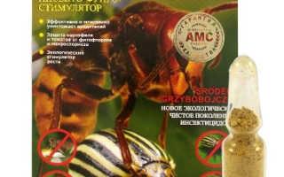 Препарат «Охотник» для картофеля: инструкция и дозировка