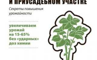 Книга «Выращивание картофеля на даче и приусадебном участке»