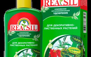 КОУ REASIL для Декоративно-лиственных — отзывы, описание