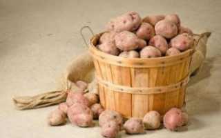 Препарат Гулливер для картофеля: инструкция и дозировка