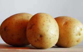 Сорт картофеля «Монализа (Monalisa)» – описание и фото