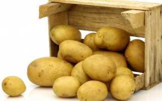 Ящик для хранения картофеля зимой в погребе и на балконе